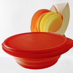 Tupperware Flatout Bowls and Organizer